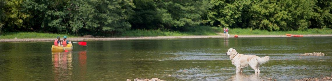 camping bord de riviere lot