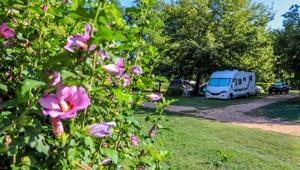 camping falaise dordogne